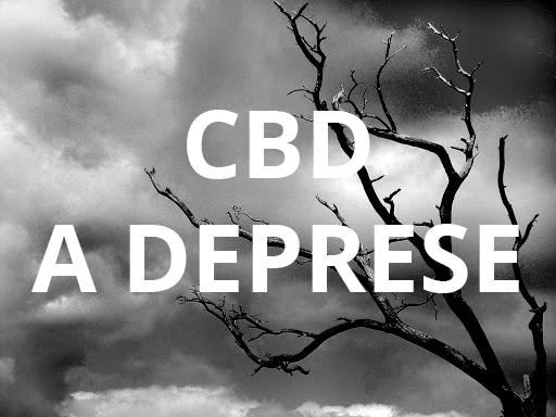 CBD na úzkost či deprese?