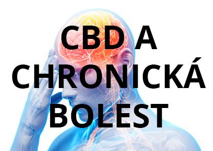 CBD a pomoc od chronické bolesti