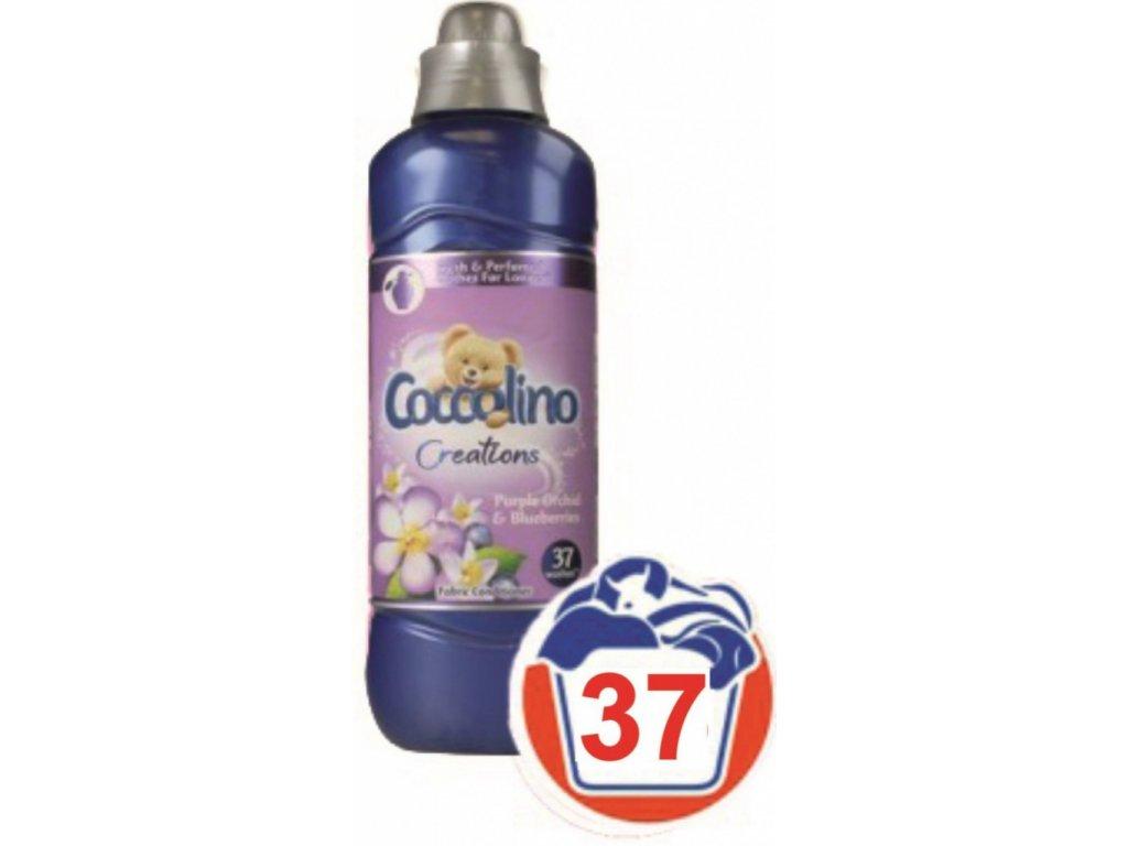 coco12