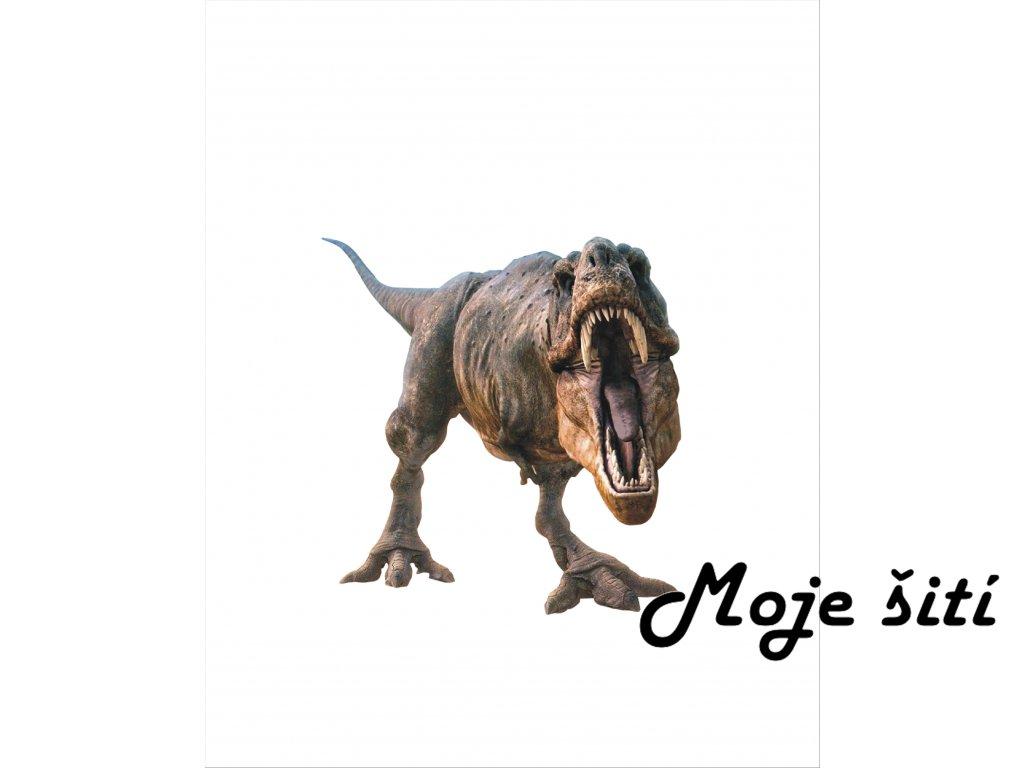 t rex 40x50