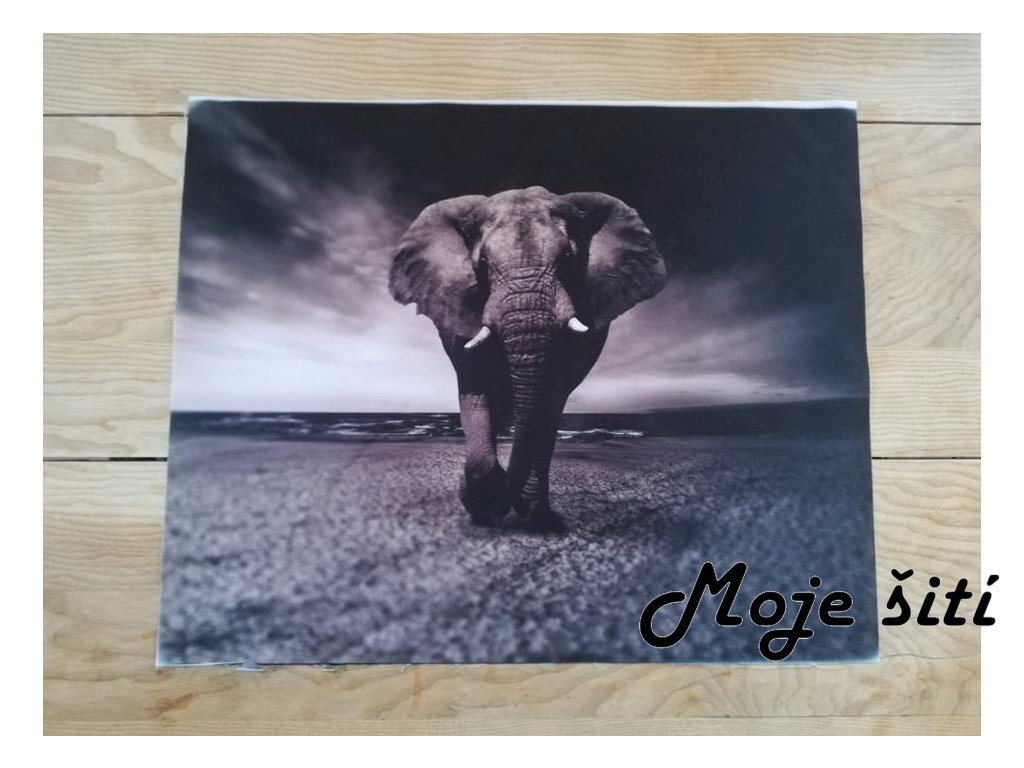 panel kocarkovina slon
