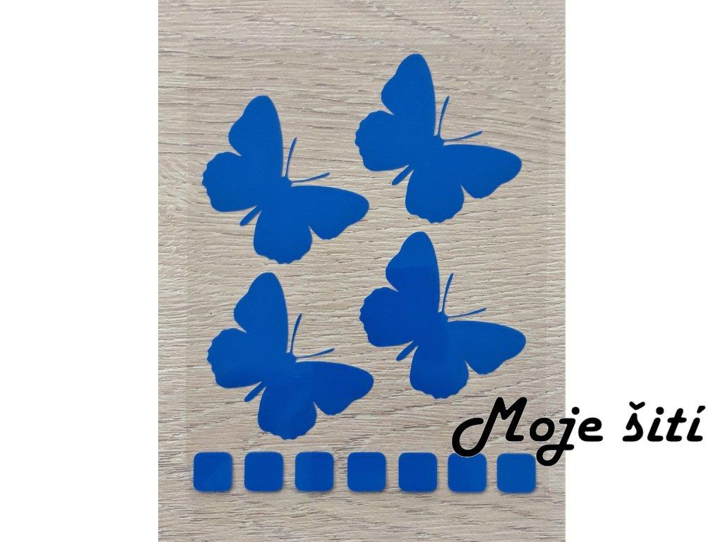 motyli modri 2