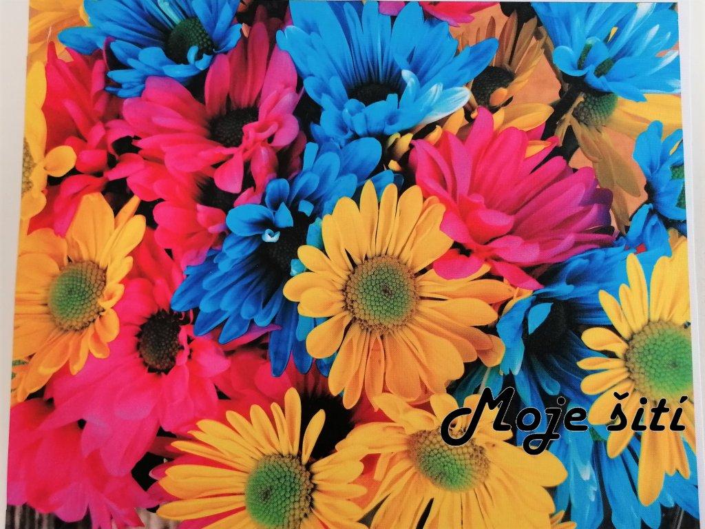 kocarkovina barevne kvety