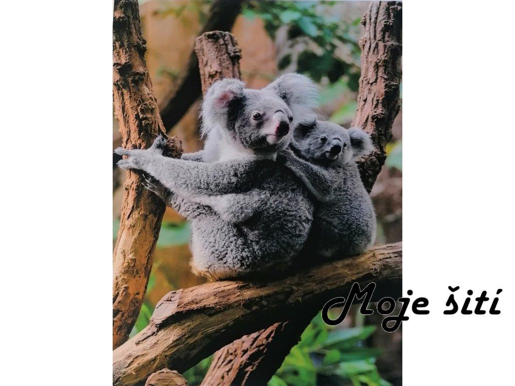 panel na triko koala