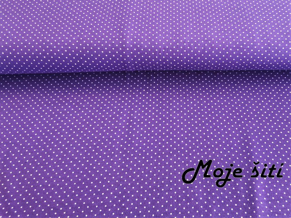 Bavlněný úplet s elastanem Bílé puntíčky na fialové