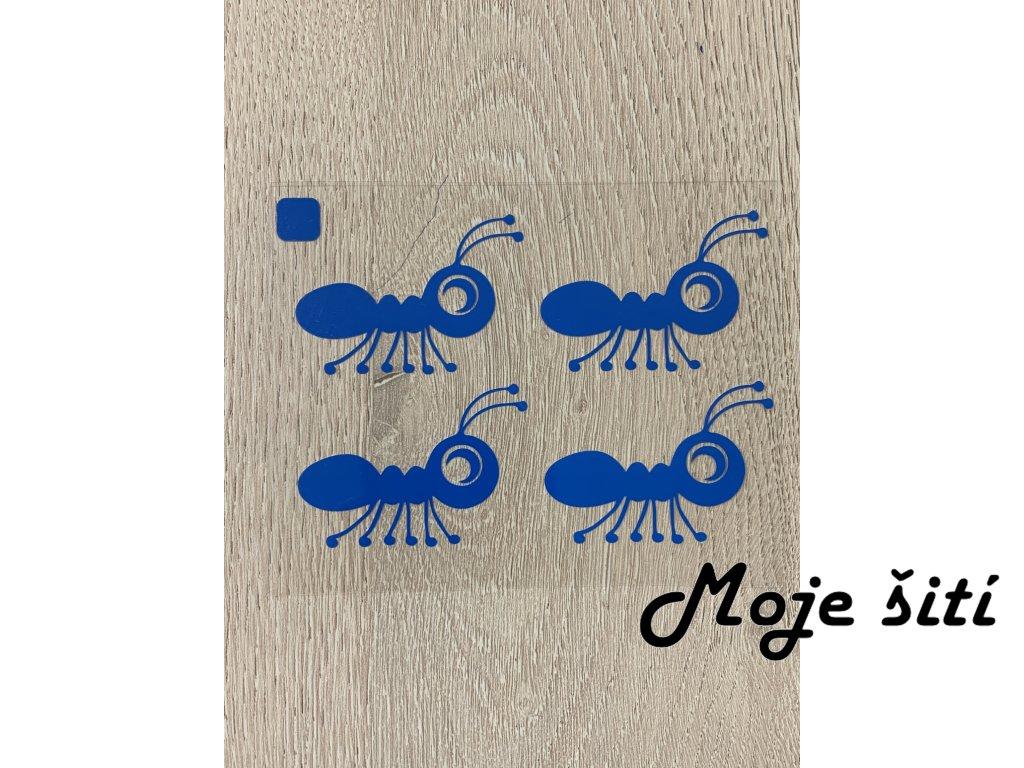 mravenci modri