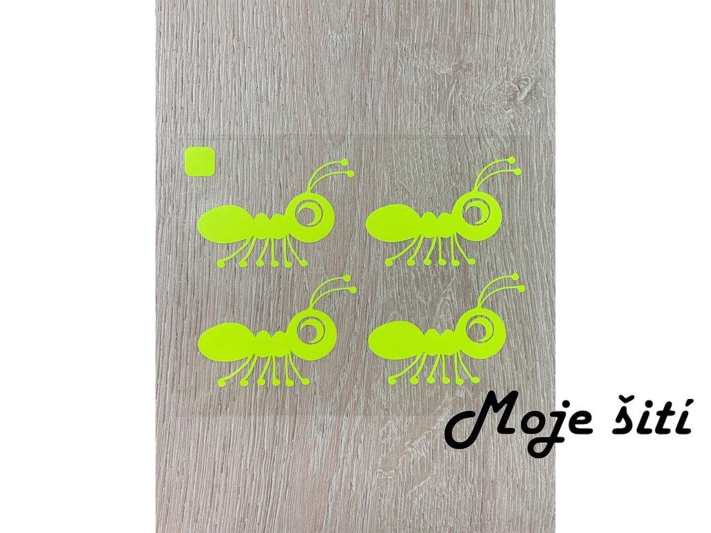 mravenci zluti