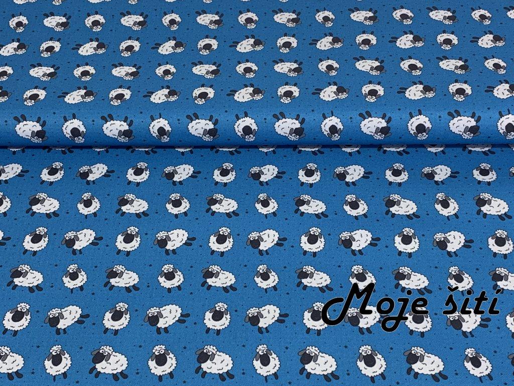 ovecky na modre