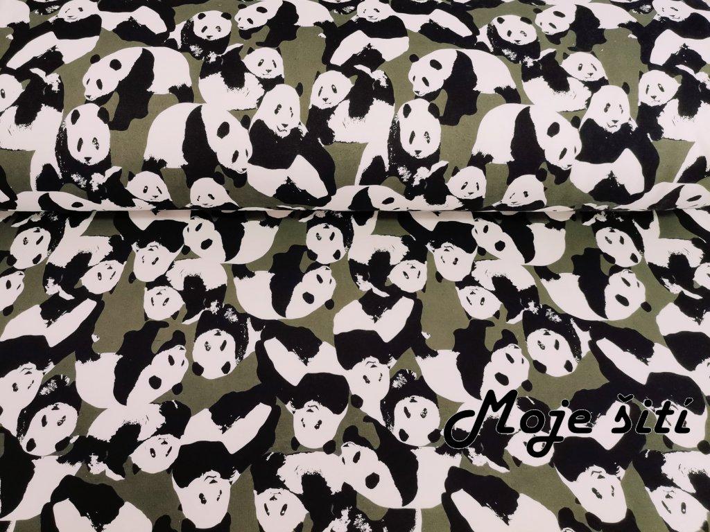 Pandy na khaki