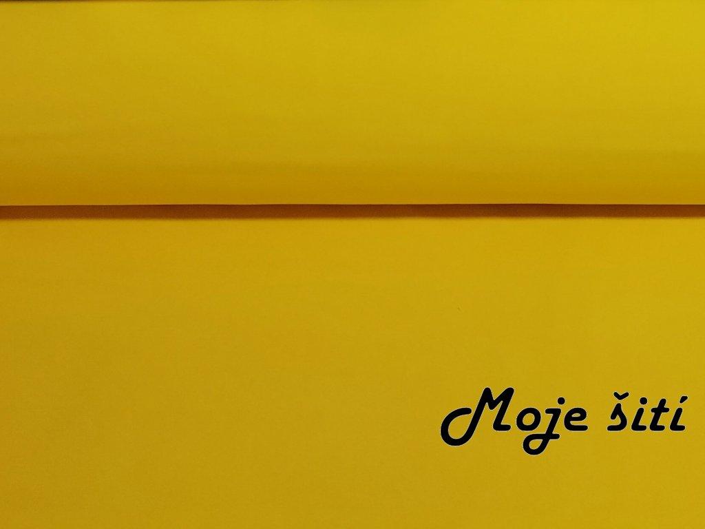 Žlutý (1)