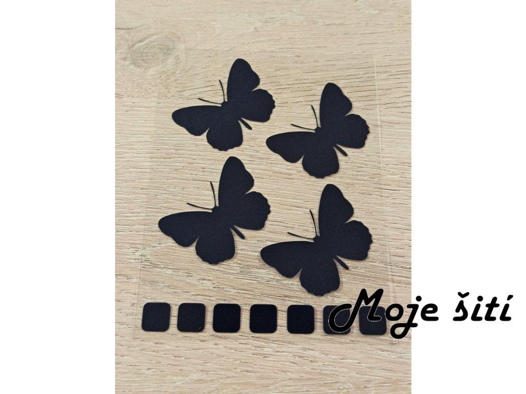černí motýli
