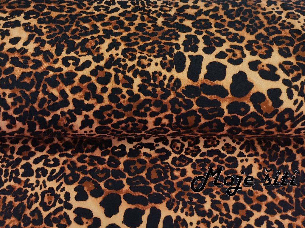 Gepardí vzor (1)