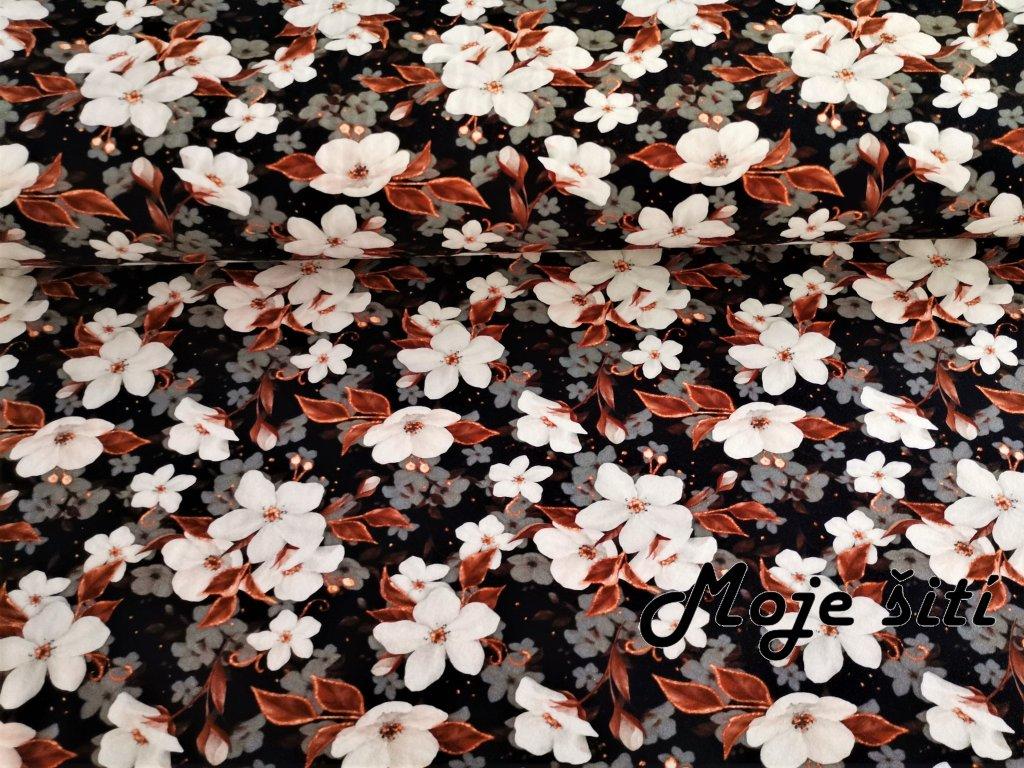 Květy jabloně na černé