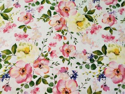 květy jabloně1