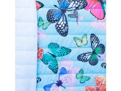 motýlci na mintové