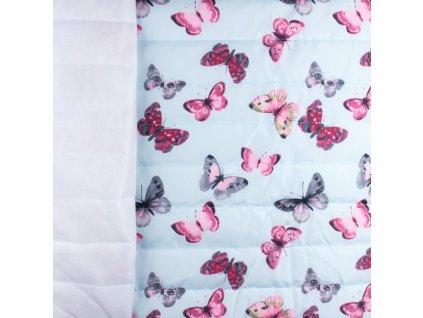 motýlci na sv modré