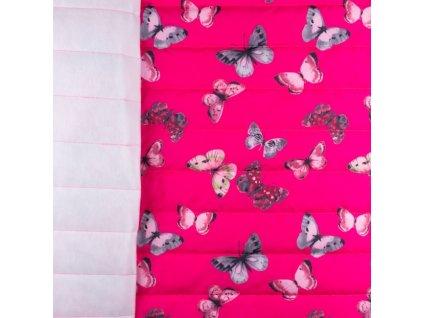 motýlci na růžové
