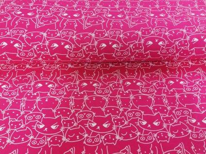 kočky na růžové (5)