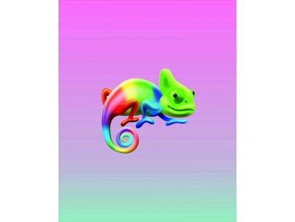 chameleon na růžové duze 40x50