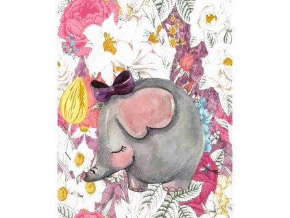 slon v květinách 40x50