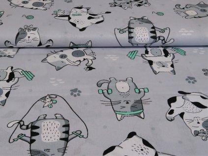 bavlnene platno kocouri s mintovymi detaily