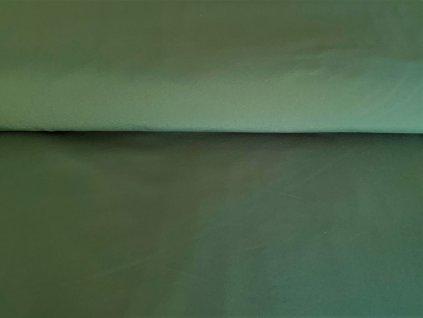 Lahvová zelená 1 (2)