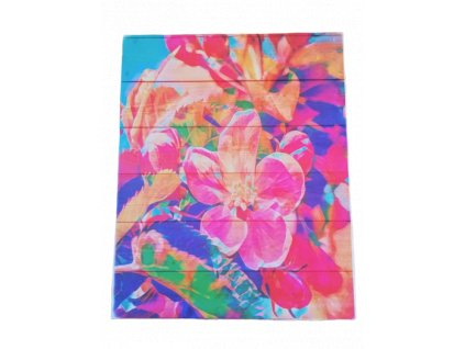 panel kocarkovina velke kvety hlavni