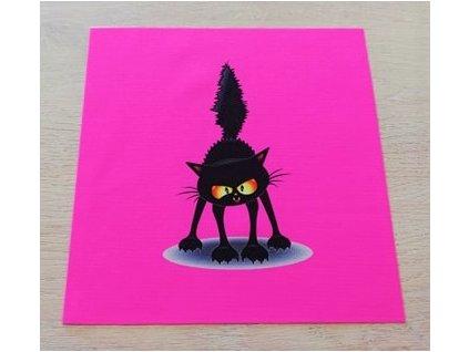 panel naježená kočka na neon růžové 20x20
