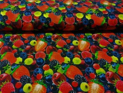 plátno ovoce (1)