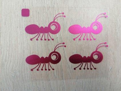 Metalické purpurové mravenci