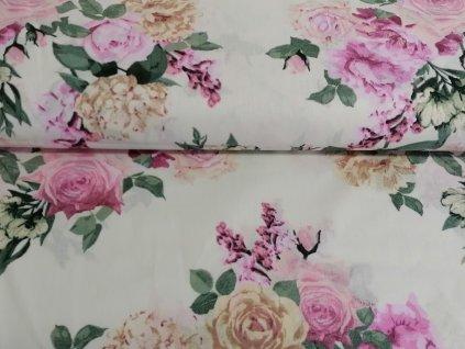 Bavlněné plátno Rozkvetlé růže na krémové