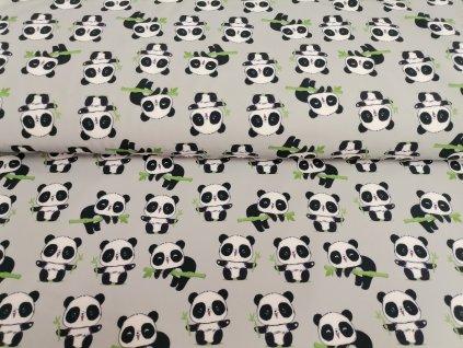Malé pandy