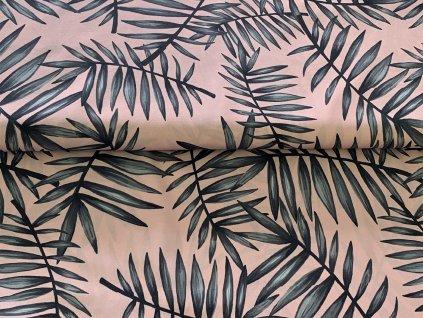 palmové listy