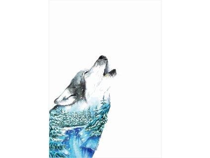zimní vlk 50x70