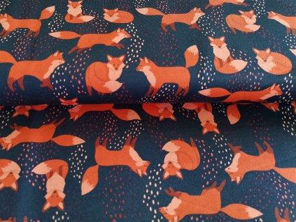 Rezaté lišky