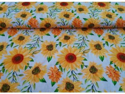 Malované slunečnice