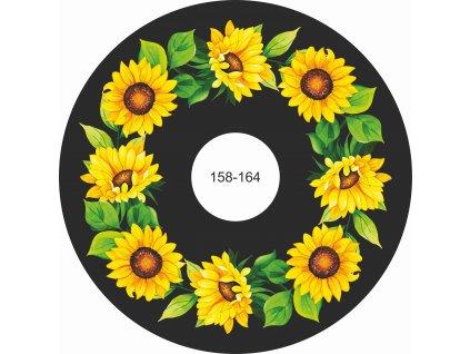 slunečnice 158 164