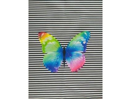 Duhový motýl na proužcích