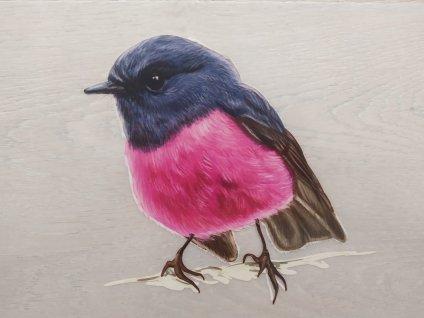 Kreslený ptáček A