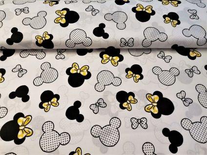 Hlavy Mickey a Minnie