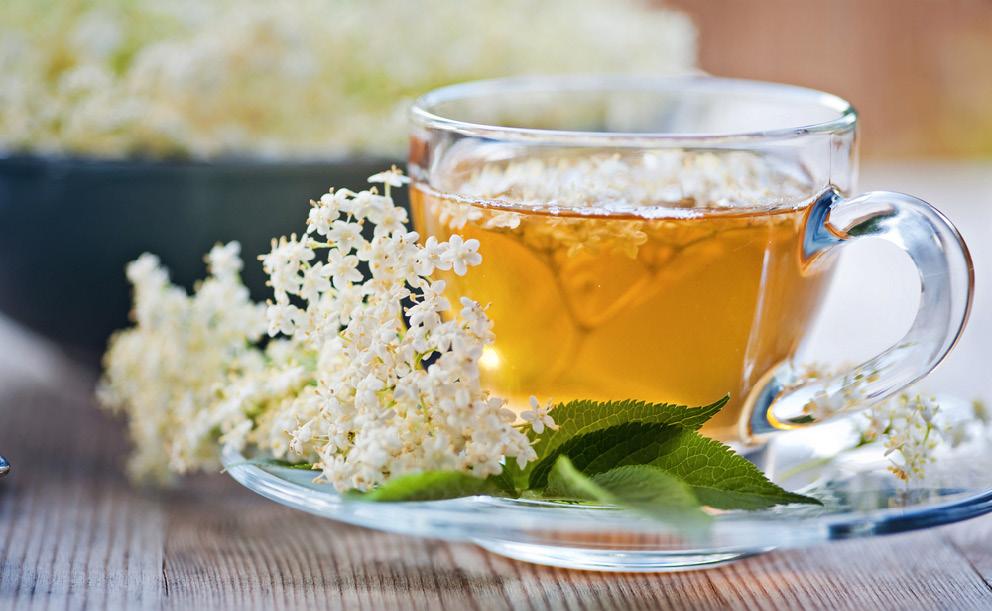 Bezový čaj proti nachlazení