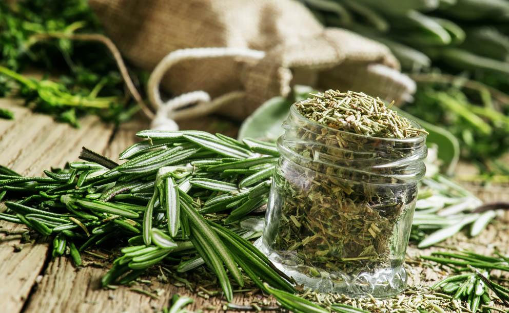 Nejlepší byliny, které porazí chřipku i nachlazení