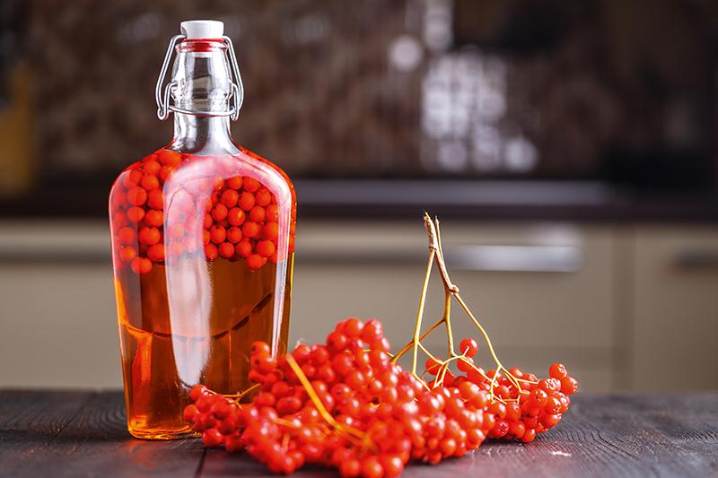5 receptů s jeřabinami, které vám pomohou proti zánětu močového měchýře nebo kašli