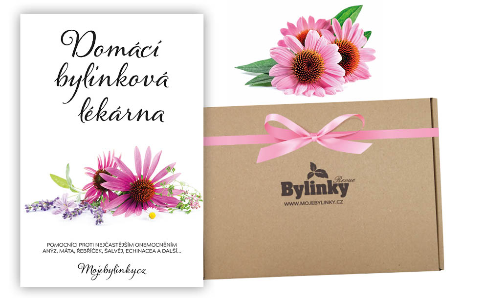 banner-blog-shoptet-lekarna2