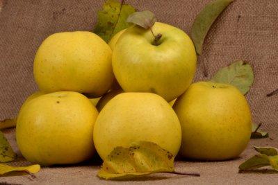 Podzimní smoothie, která voní po jablkách