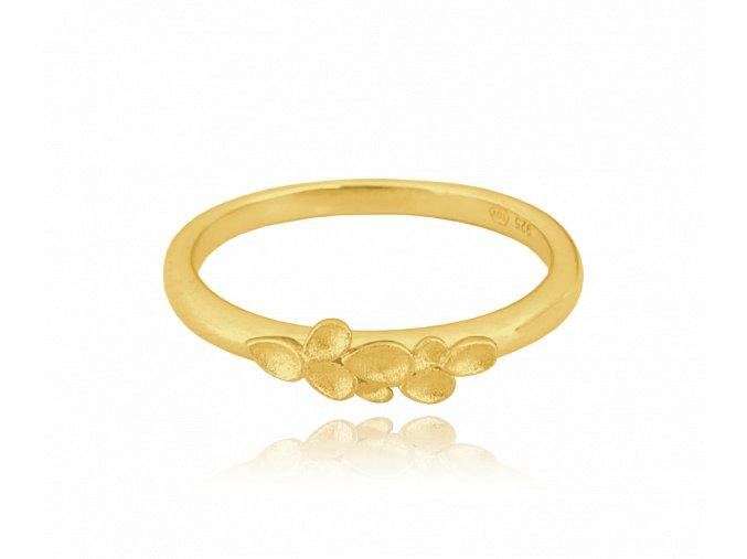 Matný pozlacený stříbrný prsten MINET EUCALYPTUS vel. 54