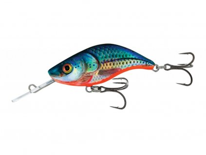 Blue Holographic Shad