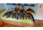 Polštář plyšová ryba - Velký kapr - délka 85 cm, výška 35cm