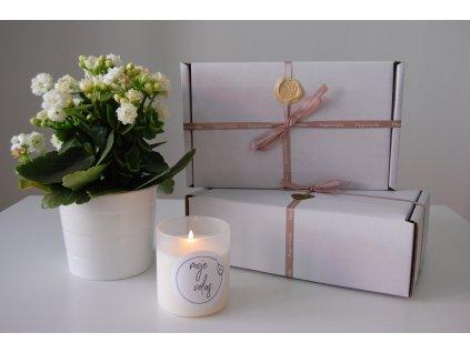Dárkové balení ručně vyrobených přírodních svíček - svíčka v českém skle a balení čajových svíček s voskem do aromalampy, vůně dle výběru
