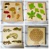 Dřevěná vkládačka - různé druhy